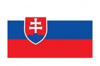 Mediátor roka Slovenskej republiky